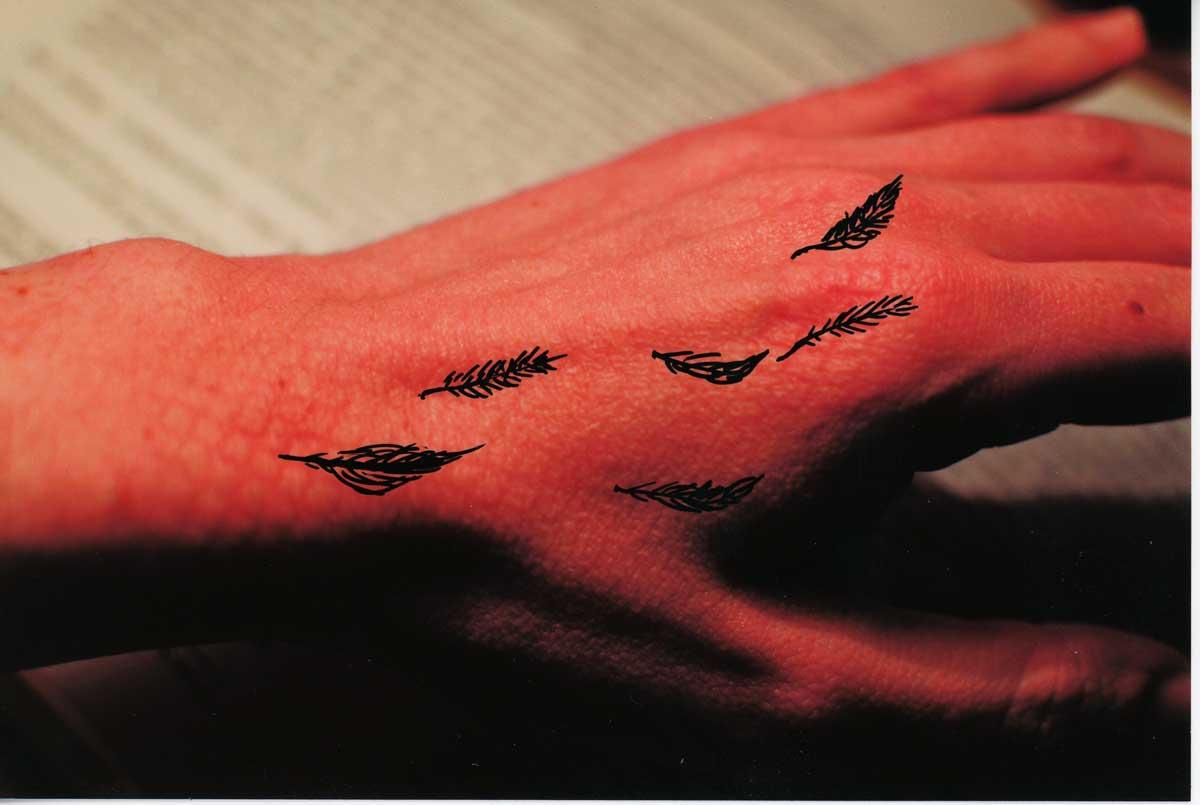 Be Creative #72 - growing Black Swan feathers, © Ines Häufler, 2011
