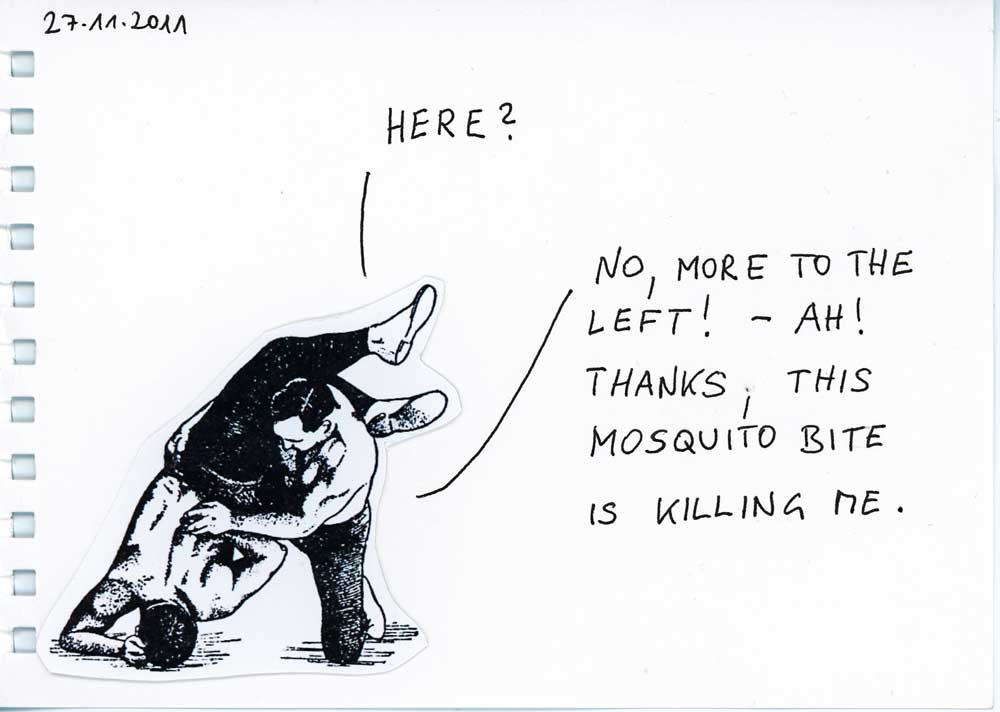 Be Creative #331 - That mosquito bite is killing me, © Ines Häufler, 2011