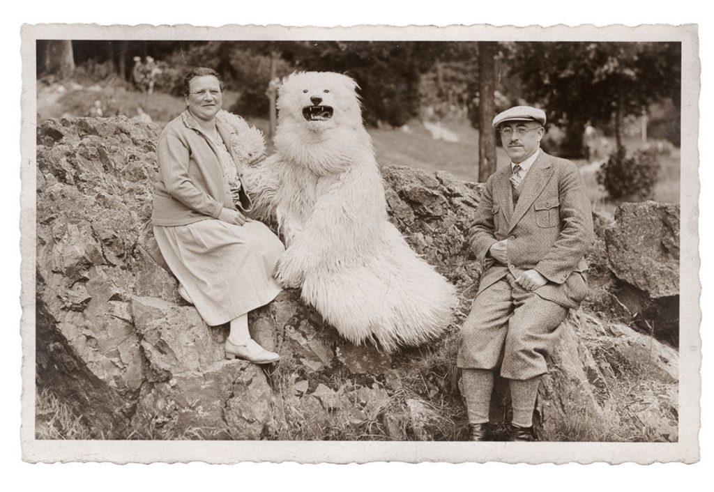 Gruppendbild mit Eisbär